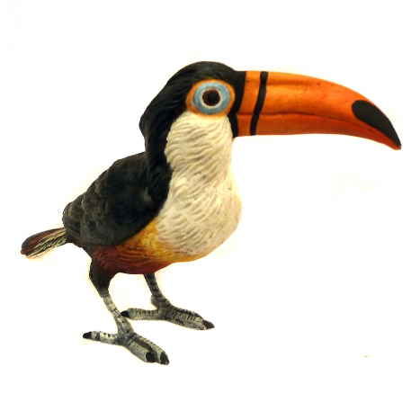 tucan, hand painted